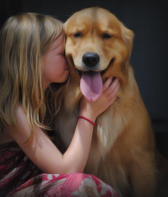 Golden Valley Dog Training Club