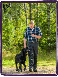 Advanced Dog Heeling