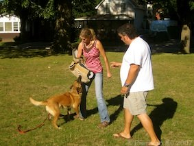 About precision k9 for Precision dog training